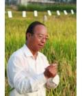 谢华安—— 农学家
